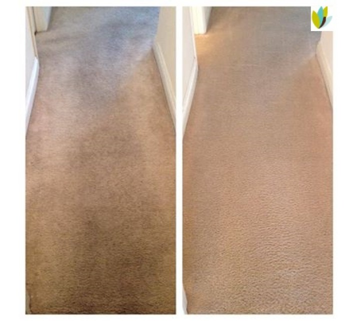 NaturalDry Carpet Cleaning
